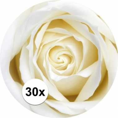 Bierviltjes witte roos 30 st