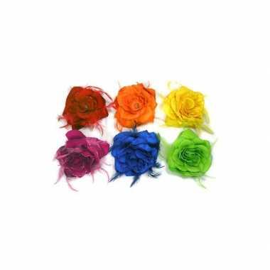 Gekleurde haarbloem roos