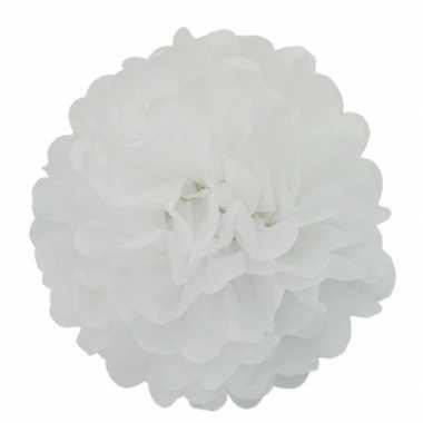 Witte decoratie pompom 35 cm
