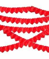 10x rode hartjes slinger van 2 meter