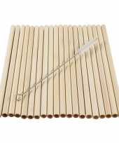 20x stuks bamboe rietjes 20 cm met borsteltje