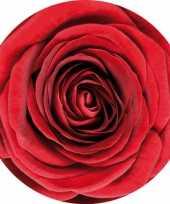 30x bierviltjes onderzetters rode roos rozen