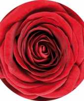 Bierviltjes rode roos 10 st