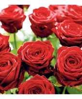 Rode rozen servetten 20 stuks