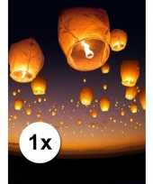 Witte wensballon xl 50 x 100 cm
